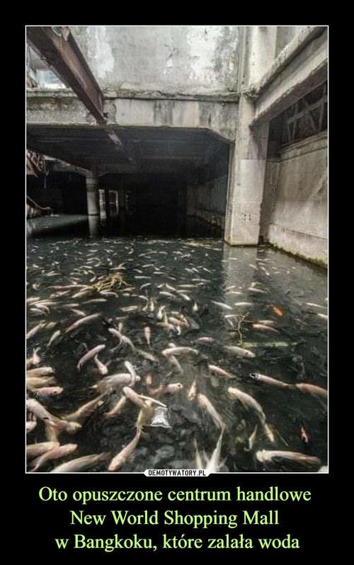 Oto opuszczone centrum handlowe  New World Shopping Mall  w Bangkoku, które zalała woda