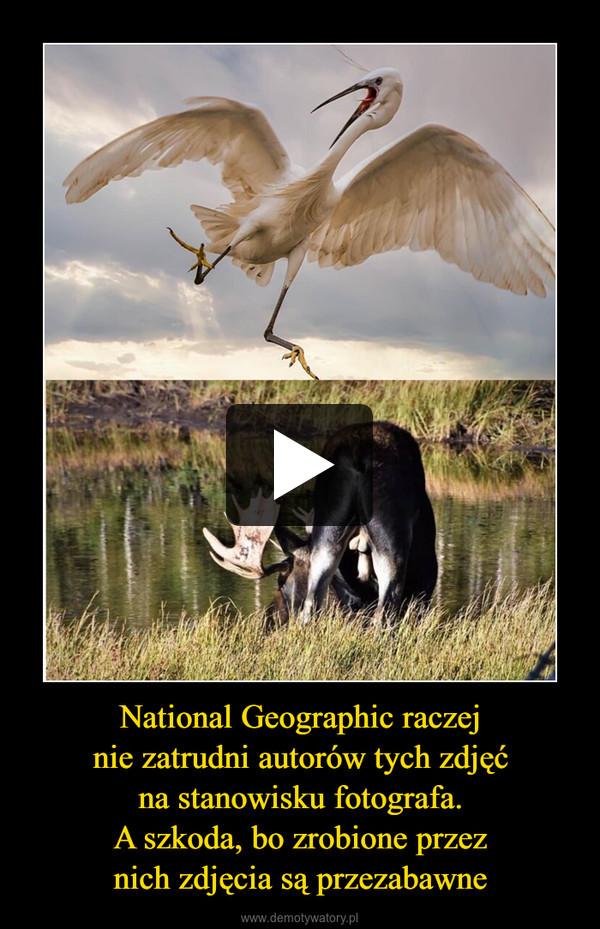 National Geographic raczejnie zatrudni autorów tych zdjęćna stanowisku fotografa.A szkoda, bo zrobione przeznich zdjęcia są przezabawne –