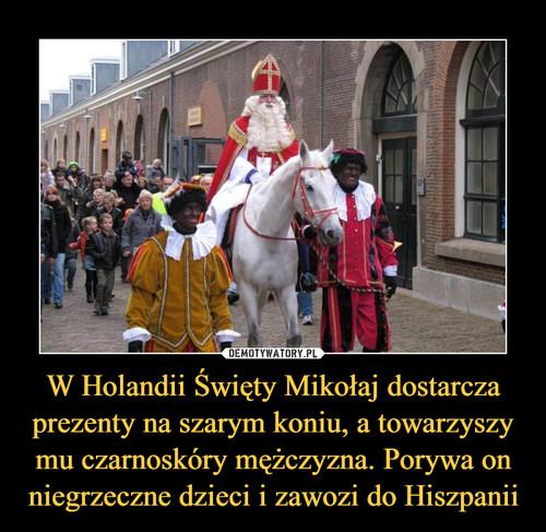 W Holandii Święty Mikołaj dostarcza prezenty na szarym koniu, a towarzyszy mu czarnoskóry mężczyzna. Porywa on niegrzeczne dzieci i zawozi do Hiszpanii