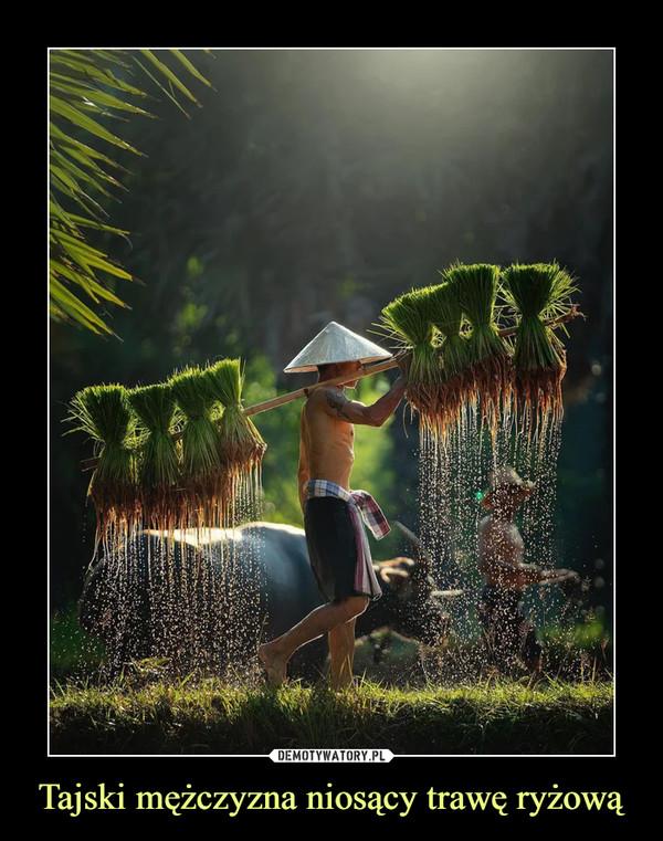 Tajski mężczyzna niosący trawę ryżową –