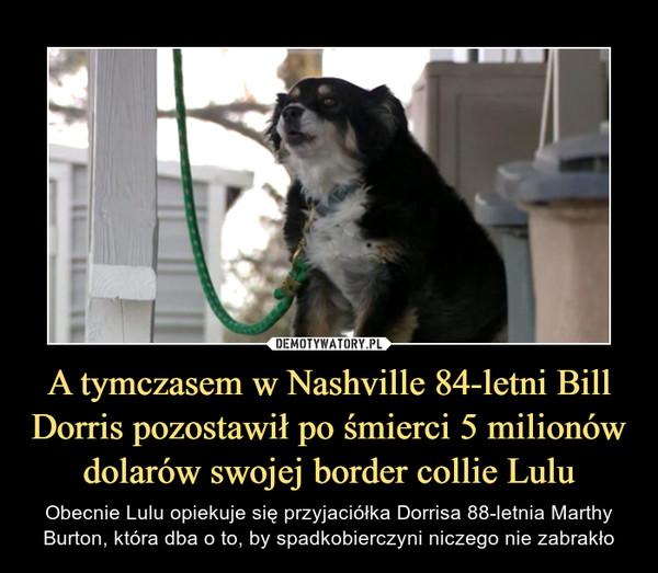 A tymczasem w Nashville 84-letni Bill Dorris pozostawił po śmierci 5 milionów dolarów swojej border collie Lulu – Obecnie Lulu opiekuje się przyjaciółka Dorrisa 88-letnia Marthy Burton, która dba o to, by spadkobierczyni niczego nie zabrakło