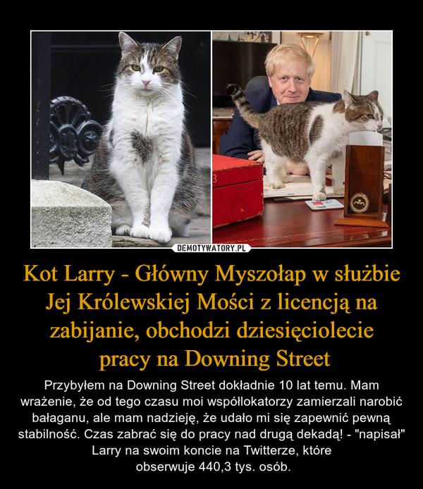 """Kot Larry - Główny Myszołap w służbie Jej Królewskiej Mości z licencją na zabijanie, obchodzi dziesięciolecie pracy na Downing Street – Przybyłem na Downing Street dokładnie 10 lat temu. Mam wrażenie, że od tego czasu moi współlokatorzy zamierzali narobić bałaganu, ale mam nadzieję, że udało mi się zapewnić pewną stabilność. Czas zabrać się do pracy nad drugą dekadą! - """"napisał"""" Larry na swoim koncie na Twitterze, które obserwuje 440,3 tys. osób."""