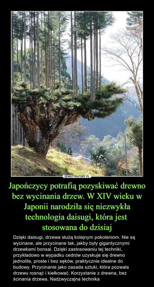 Japończycy potrafią pozyskiwać drewno bez wycinania drzew. W XIV wieku w Japonii narodziła się niezwykła technologia daisugi, która jest  stosowana do dzisiaj