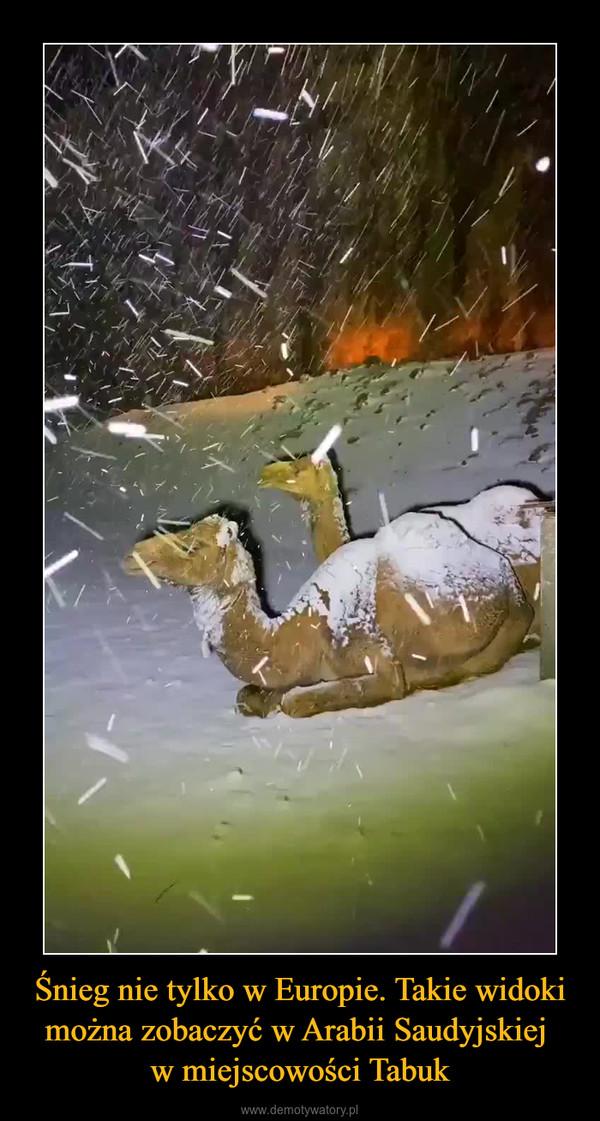 Śnieg nie tylko w Europie. Takie widoki można zobaczyć w Arabii Saudyjskiej w miejscowości Tabuk –
