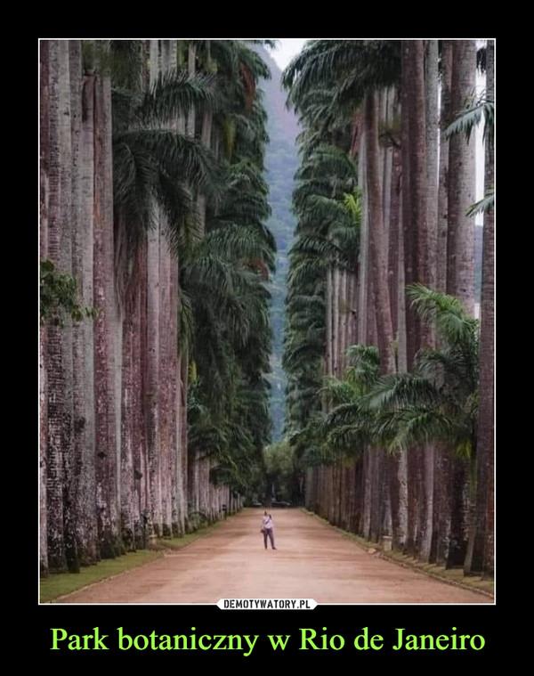 Park botaniczny w Rio de Janeiro –