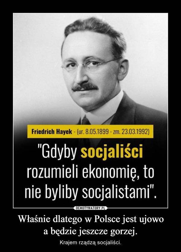 Właśnie dlatego w Polsce jest ujowoa będzie jeszcze gorzej. – Krajem rządzą socjaliści.