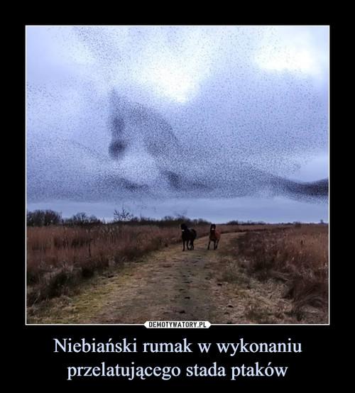 Niebiański rumak w wykonaniu przelatującego stada ptaków