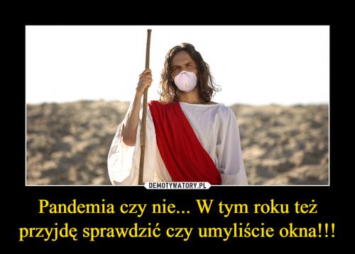 Pandemia czy nie... W tym roku też przyjdę sprawdzić czy umyliście okna!!!