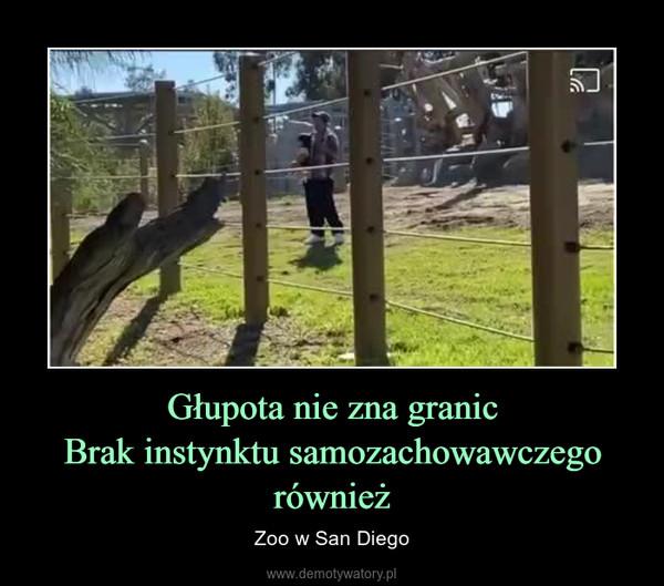 Głupota nie zna granicBrak instynktu samozachowawczego również – Zoo w San Diego