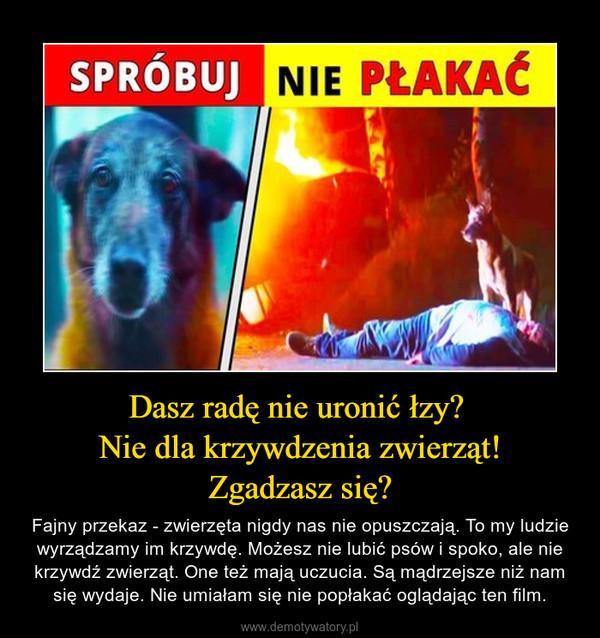 Dasz radę nie uronić łzy? Nie dla krzywdzenia zwierząt!Zgadzasz się? – Fajny przekaz - zwierzęta nigdy nas nie opuszczają. To my ludzie wyrządzamy im krzywdę. Możesz nie lubić psów i spoko, ale nie krzywdź zwierząt. One też mają uczucia. Są mądrzejsze niż nam się wydaje. Nie umiałam się nie popłakać oglądając ten film.