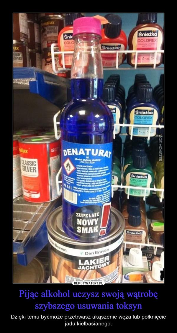 Pijąc alkohol uczysz swoją wątrobę szybszego usuwania toksyn – Dzięki temu byćmoże przetrwasz ukąszenie węża lub połknięcie jadu kiełbasianego.