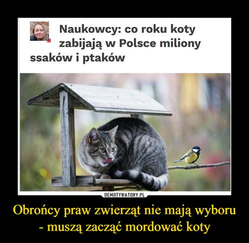 Obrońcy praw zwierząt nie mają wyboru - muszą zacząć mordować koty