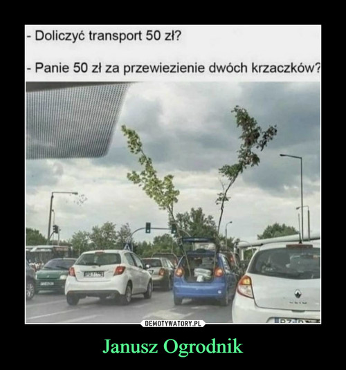 Janusz Ogrodnik