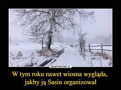 W tym roku nawet wiosna wygląda,  jakby ją Sasin organizował