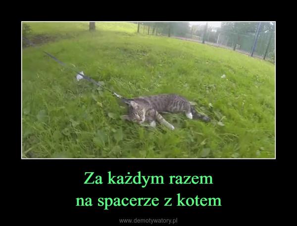 Za każdym razemna spacerze z kotem –