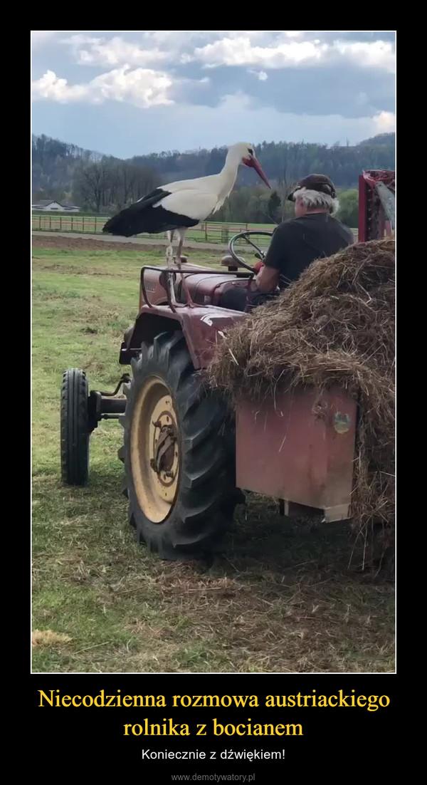 Niecodzienna rozmowa austriackiego rolnika z bocianem – Koniecznie z dźwiękiem!