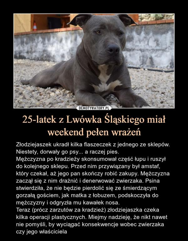 25-latek z Lwówka Śląskiego miał weekend pełen wrażeń – Złodziejaszek ukradł kilka flaszeczek z jednego ze sklepów. Niestety, dorwały go psy... a raczej pies.Mężczyzna po kradzieży skonsumował część łupu i ruszył do kolejnego sklepu. Przed nim przywiązany był amstaf, który czekał, aż jego pan skończy robić zakupy. Mężczyzna zaczął się z nim drażnić i denerwować zwierzaka. Psina stwierdziła, że nie będzie pierdolić się ze śmierdzącym gorzałą gościem, jak matka z łobuzem, podskoczyła do mężczyzny i odgryzła mu kawałek nosa.Teraz (prócz zarzutów za kradzież) złodziejaszka czeka kilka operacji plastycznych. Miejmy nadzieję, że nikt nawet nie pomyśli, by wyciągać konsekwencje wobec zwierzaka czy jego właściciela Złodziejaszek ukradł kilka flaszeczek z jednego ze sklepów. Niestety, dorwały go psy... a raczej pies.Mężczyzna po kradzieży skonsumował część łupu i ruszył do kolejnego sklepu. Przed nim przywiązany był amstaf, który czekał, aż jego pan skończy robić zakupy. Mężczyzna zaczął się z nim drażnić i denerwować zwierzaka. Psina stwierdziła, że nie będzie pierdolić się ze śmierdzącym gorzałą gościem, jak matka z łobuzem, podskoczyła do mężczyzny i odgryzła mu kawałek nosa.Teraz (prócz zarzutów za kradzież) złodziejaszka czeka kilka operacji plastycznych. Miejmy nadzieję, że nikt nawet nie pomyśli, by wyciągać konsekwencje wobec zwierzaka czyjego właściciela.