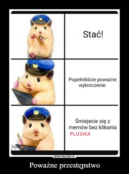 Poważne przestępstwo