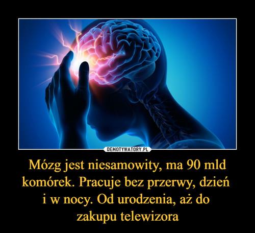 Mózg jest niesamowity, ma 90 mld komórek. Pracuje bez przerwy, dzień  i w nocy. Od urodzenia, aż do  zakupu telewizora