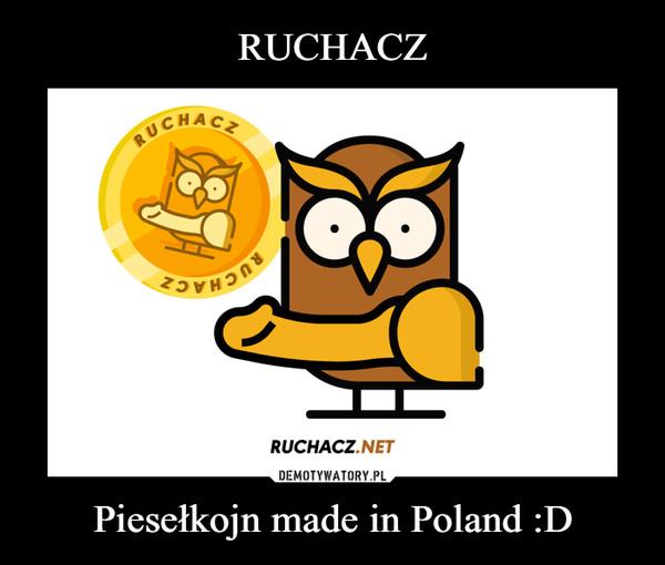 Piesełkojn made in Poland :D –