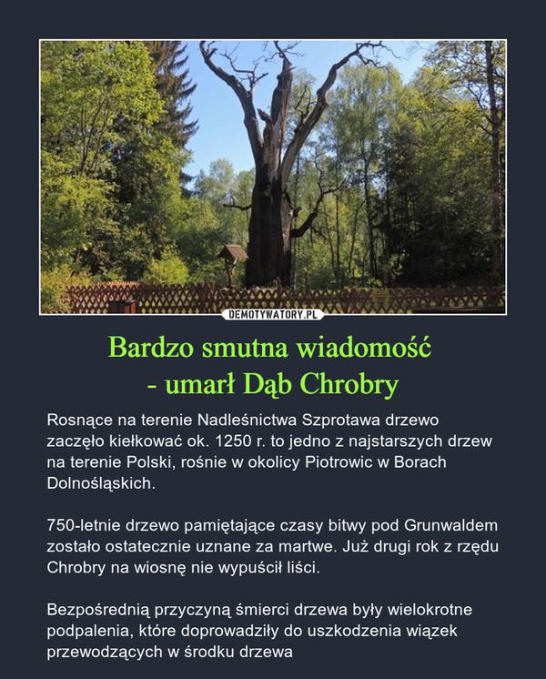 Bardzo smutna wiadomość - umarł Dąb Chrobry – Rosnące na terenie Nadleśnictwa Szprotawa drzewo zaczęło kiełkować ok. 1250 r. to jedno z najstarszych drzew na terenie Polski, rośnie w okolicy Piotrowic w Borach Dolnośląskich. 750-letnie drzewo pamiętające czasy bitwy pod Grunwaldem zostało ostatecznie uznane za martwe. Już drugi rok z rzędu Chrobry na wiosnę nie wypuścił liści.Bezpośrednią przyczyną śmierci drzewa były wielokrotne podpalenia, które doprowadziły do uszkodzenia wiązek przewodzących w środku drzewa