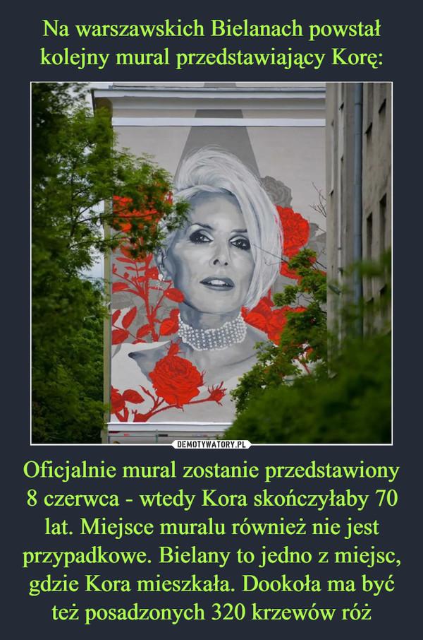 Oficjalnie mural zostanie przedstawiony 8 czerwca - wtedy Kora skończyłaby 70 lat. Miejsce muralu również nie jest przypadkowe. Bielany to jedno z miejsc, gdzie Kora mieszkała. Dookoła ma być też posadzonych 320 krzewów róż –