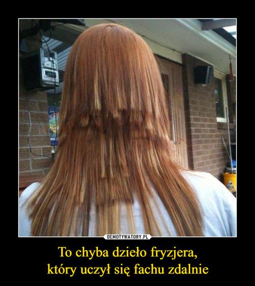 To chyba dzieło fryzjera, który uczył się fachu zdalnie