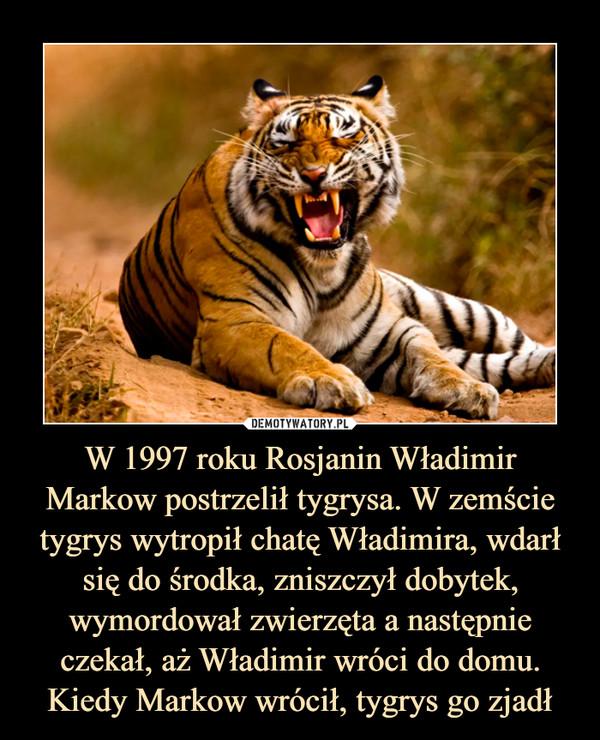 W 1997 roku Rosjanin Władimir Markow postrzelił tygrysa. W zemście tygrys wytropił chatę Władimira, wdarł się do środka, zniszczył dobytek, wymordował zwierzęta a następnie czekał, aż Władimir wróci do domu. Kiedy Markow wrócił, tygrys go zjadł –