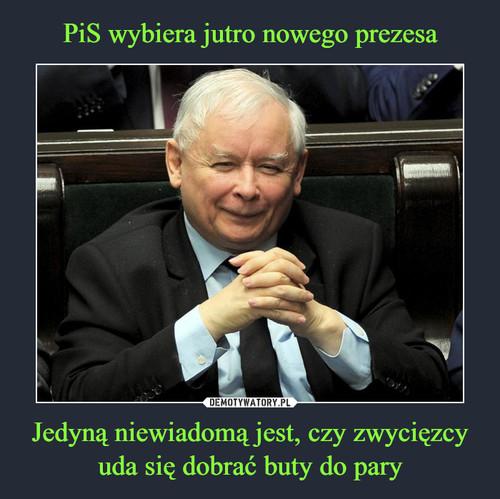 PiS wybiera jutro nowego prezesa Jedyną niewiadomą jest, czy zwycięzcy uda się dobrać buty do pary