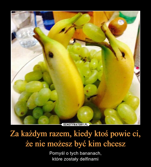 Za każdym razem, kiedy ktoś powie ci, że nie możesz być kim chcesz – Pomyśl o tych bananach,które zostały delfinami