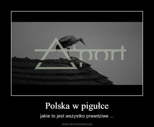 Polska w pigułce – jakie to jest wszystko prawdziwe ...